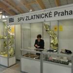 Schola Pragensis 2012